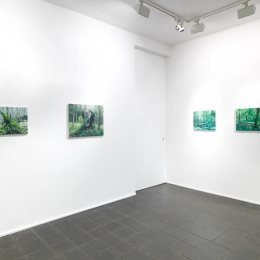 Exhibition View, Galerie Robert Drees, 2017