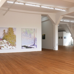 Exhibition View Kunstverein Rosenheim 2015